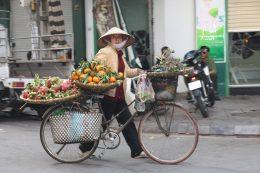 Rencontre avec le Viêt-Nam et sa culture