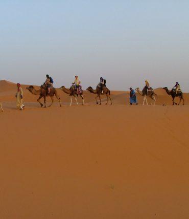 Maroc : Nomades au Sahara