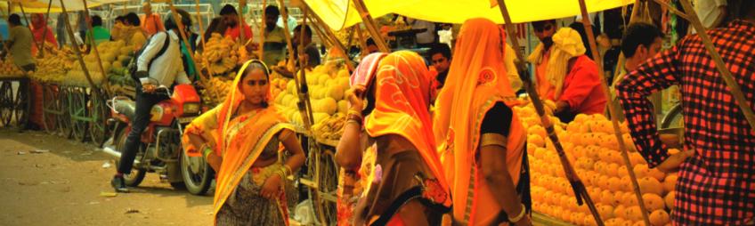 Inde du nord, le Rajasthan ou le rêve éveillé