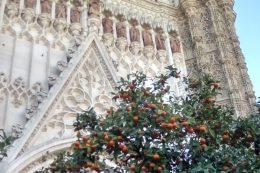 De Al Andalus à l'Andalousie